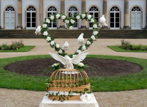 Hochzeitstauben Dresden mit dem großen Rosenherz im Schloss Pillnitz