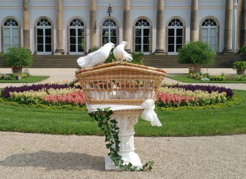 Hochzeitstauben Dresden mit seiner klassischen Variante im Schlosspark Pillnitz